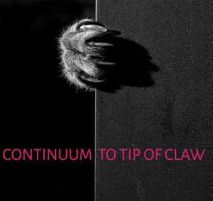 Continuum of Claw